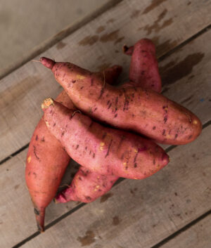 Red Garnet Sweet Potatoes